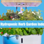 All you need to start your DIY Hydroponic Herb Garden Indoor