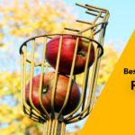 [Top 5] Best Fruit Picker to Buy in 2021 (Reviews)