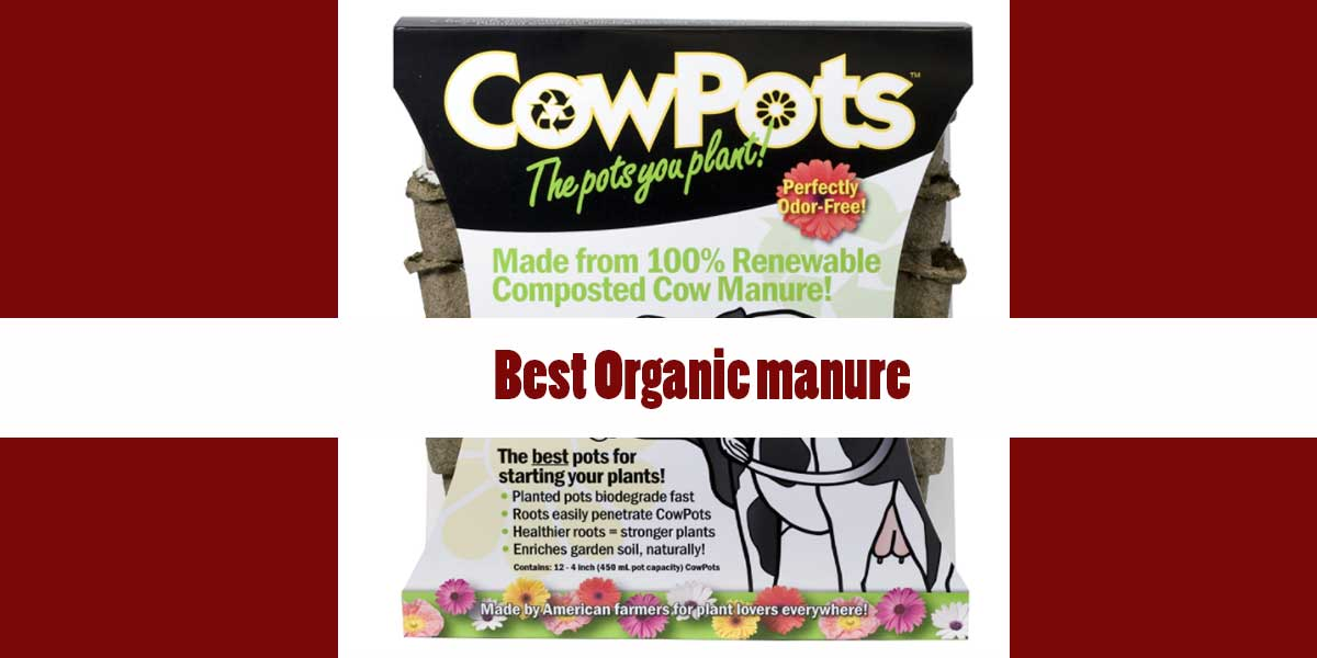 [Top 5] Best Organic manure Reviews & Buyer's Guide [2021]