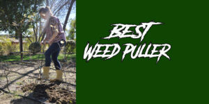 [Top 5] Best Weed Puller Reviews & Buyer's Guide (2020)