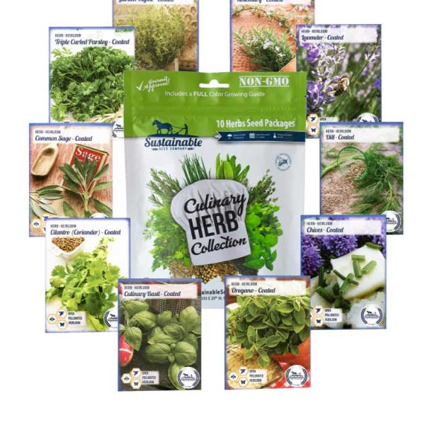 Variety Culinary Herb Collection