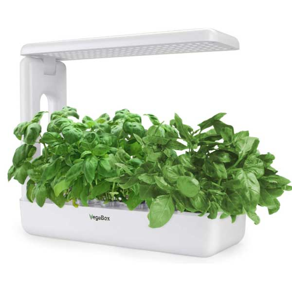 VegeBox-Smart-LED-Hydroponics-Growing-System