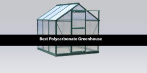 [Top 5] Best Polycarbonate Greenhouse Reviews | 2020