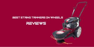 [Top 5] Best String Trimmers on Wheels Reviews [2021]