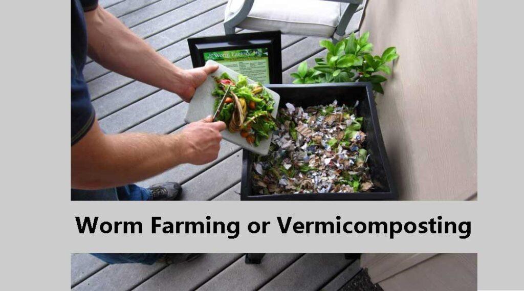 Worm-Farming