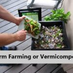 Worm Farming or Vermicomposting Full Guide