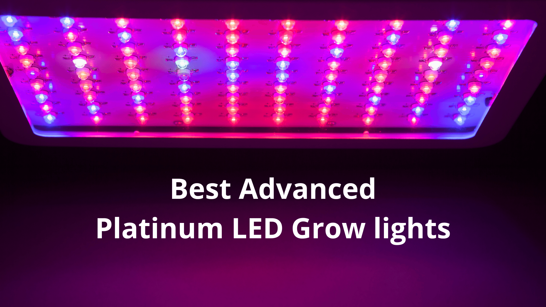 Read more about the article Best Advanced Platinum LED Grow lights Reviews