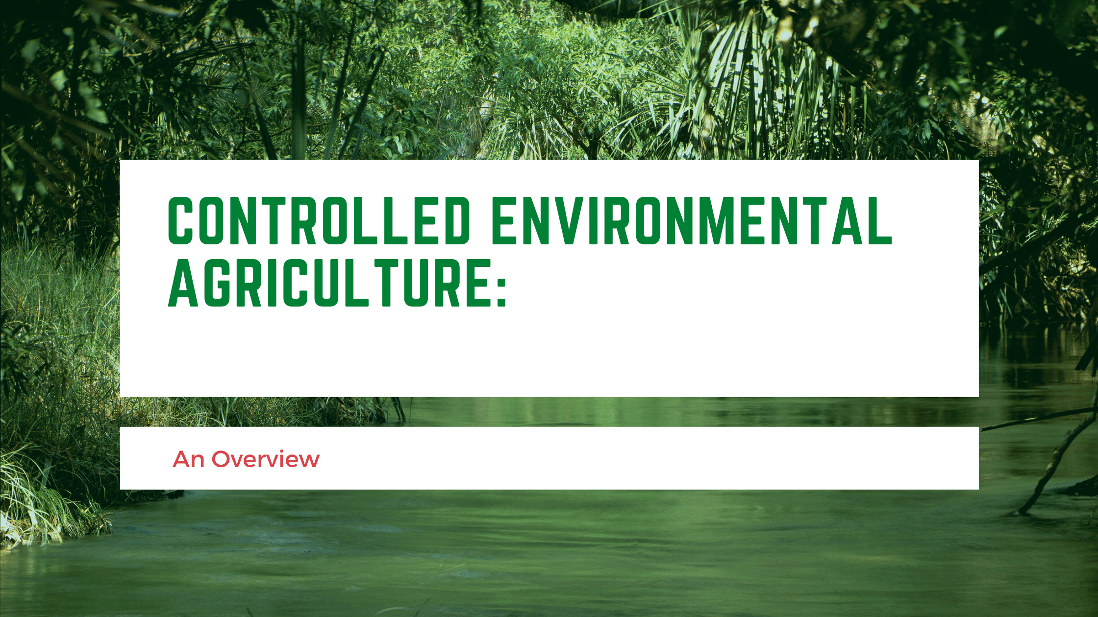 Read more about the article Controlled Environmental Agriculture: An Overview